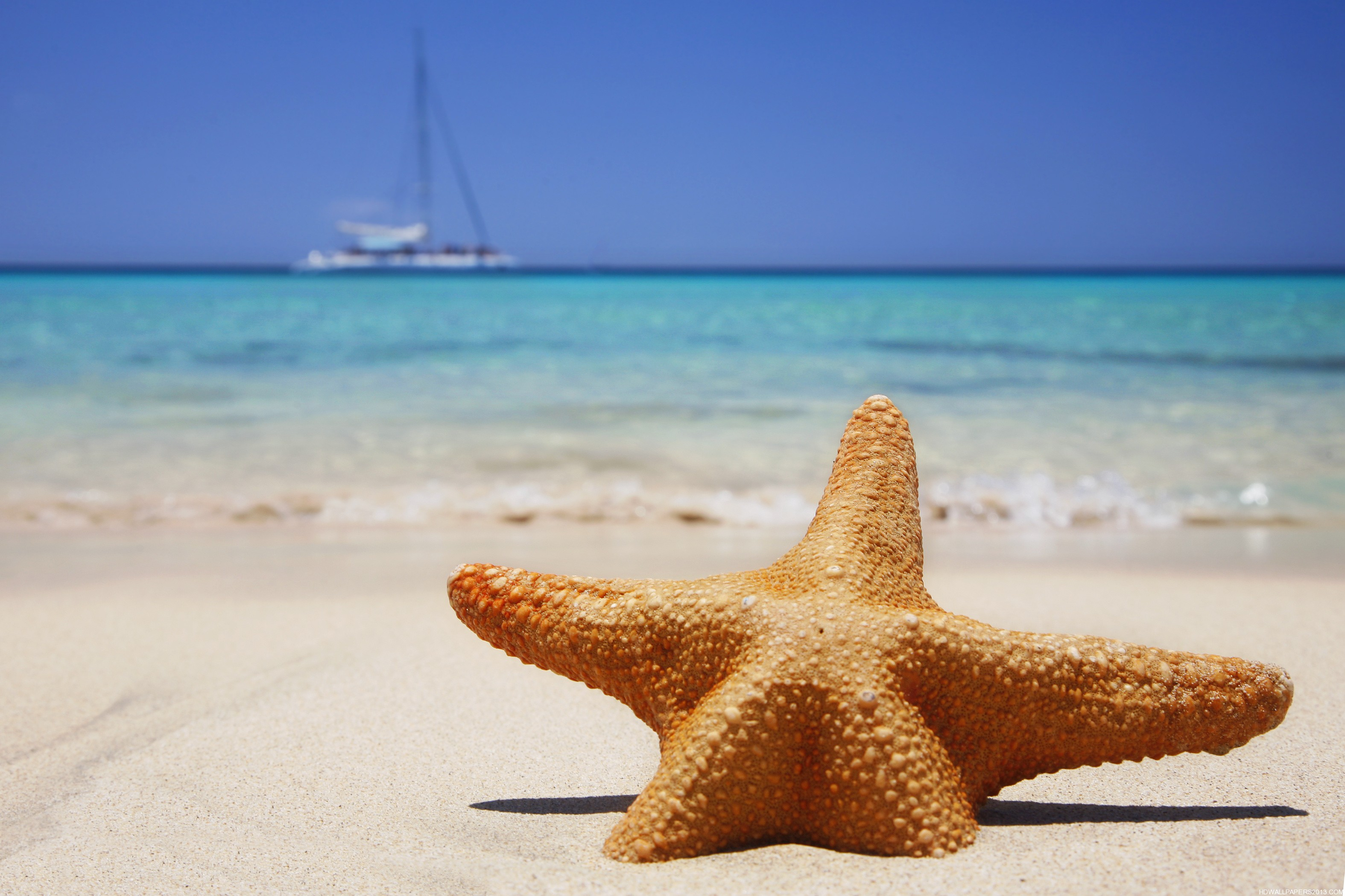Sun Sea Sand Beach Beauty Essentials Tips For Hair