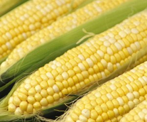 Corn Facial Mask for Dry Skin